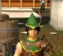 Elite Robin Hood hat
