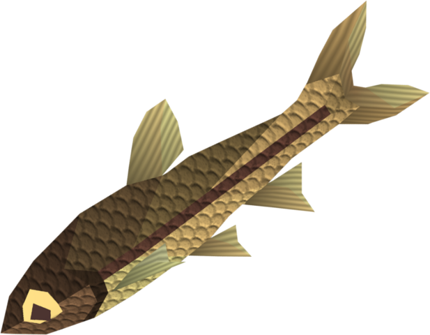 File:Minnow detail.png