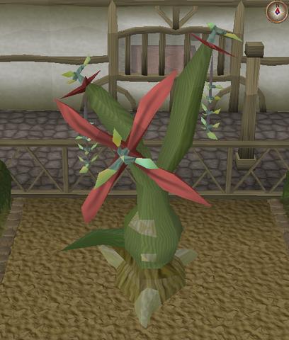 File:Jade vine branch pruning stage 2.png