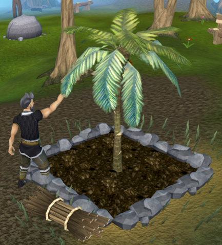 File:Picking coconuts.png