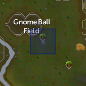 Crystal tree (Tree Gnome Stronghold) location