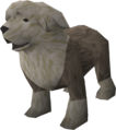 Sheepdog (grey) pet.png