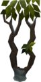 Thigat tree.png