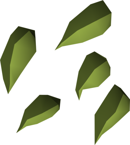File:Green blossom seed detail.png