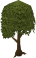 Tree old.png