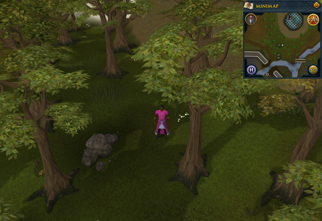File:Compass clue Ardougne south of the Observatory.png