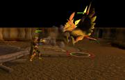 Phoenix fight