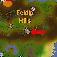 Runewiki Fairy Ring