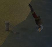 RO duiken