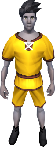 File:Gnomeballer's kit (orange) equipped.png
