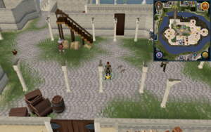 Scan clue Falador centre of White Knights' Castle courtyard