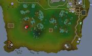 Lum swamp map