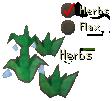 Miscellania herbs