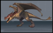 Fire Drake (adolescent) concept art