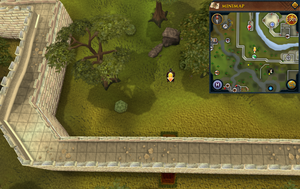 Scan clue Falador south of gem shop