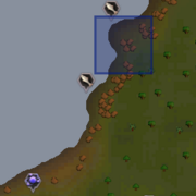 Jungle strykewyrm location