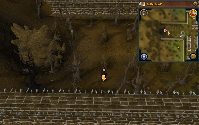 File:Scan clue West Ardougne outside Underground Pass entrance.png