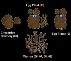 Easter Bunny's burrow map