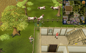 Scan clue East Ardougne outside Servants' Guild