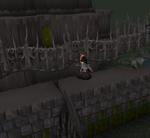 Castle Drakan toren1