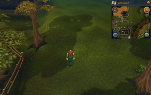Compass clue Draynor north-east of Draynor Jail