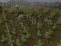 Goblin raid.png