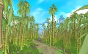 Tuai Leit bamboo forest