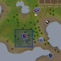 Brimhaven Dungeon entrance location.png