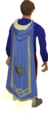 Defence master cape equipped.png