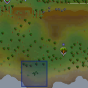Vanilla pod location