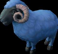 Winterwold ram (NPC)