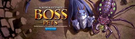 Boss Pets head banner