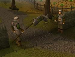 Starterarea guards