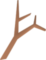 Branch detail.png