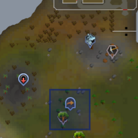 Fairy ring AKQ location