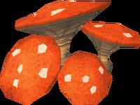 Mushrooms (Mazcab)