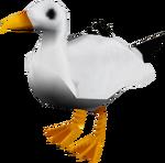 Seagull (Ashdale)