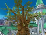 Spirit Tree (Prifddinas)