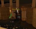 Arianwyn kills shadow.png