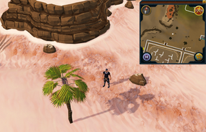Compass clue Al Kharid north of Duel Arena