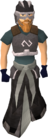 Void Justiciar armour worn old