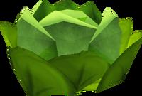 Cabbage (NPC)