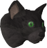 Pet cat (black) chathead