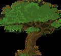 Tree (clan).png