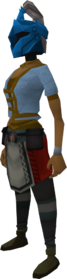 Rune heraldic helm (Saradomin) equipped