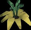 Vine flower detail