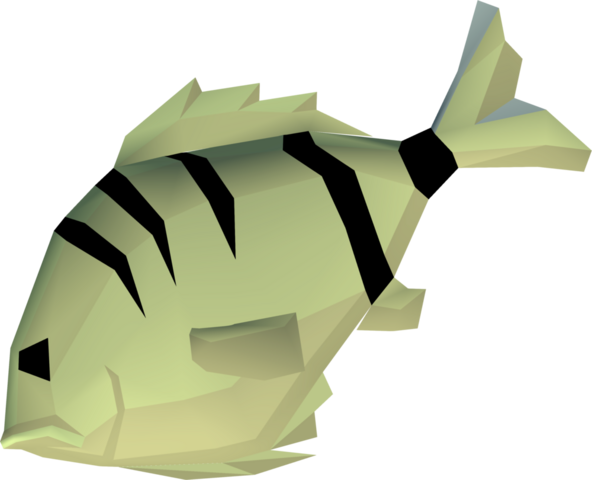 File:Raw cavefish detail.png