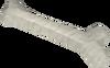 Polished femur bone detail