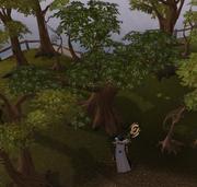 Derrubando a árvore de Koschei