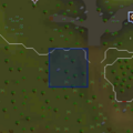 Circus (Tree Gnome Stronghold) location.png